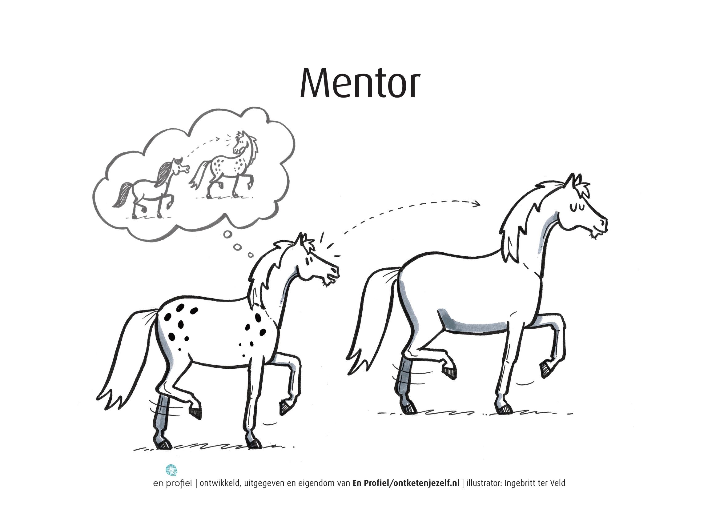 Needs mentor
